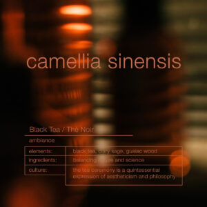 Zenology Camellia Sinensis Home Fragrance Notes